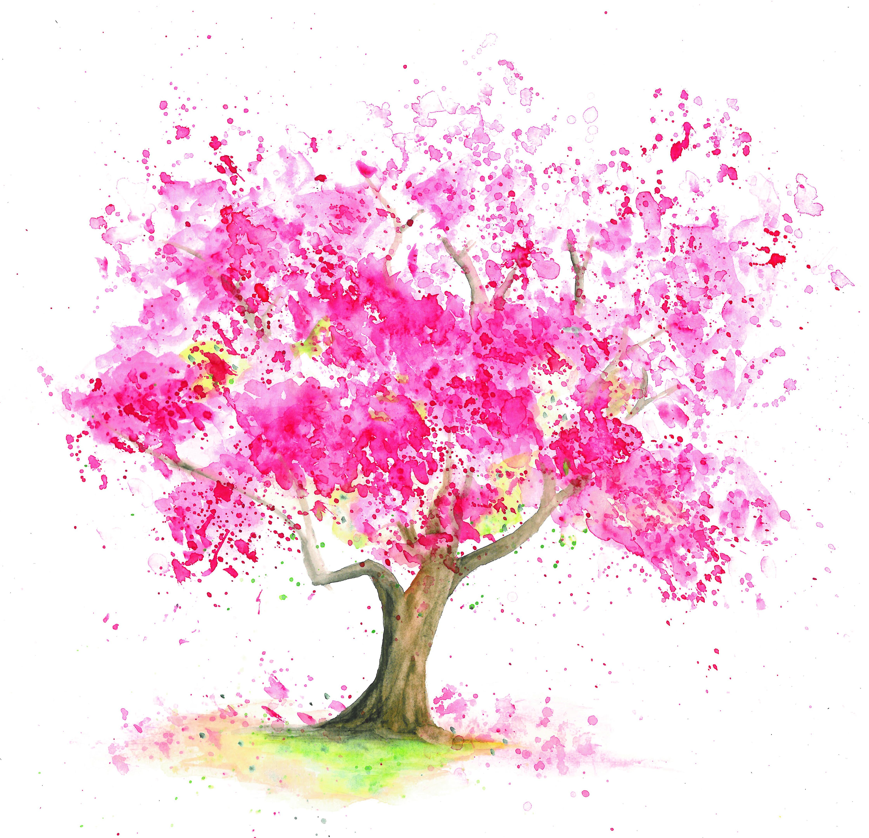 Aquarell eines Kirschbaumes